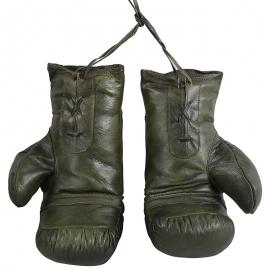 Guantes Boxeo Piel Vintage Verdes