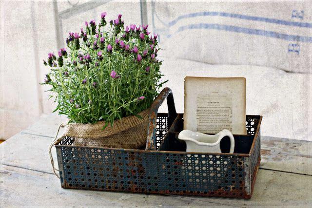 Flores vintage (Pinterest)
